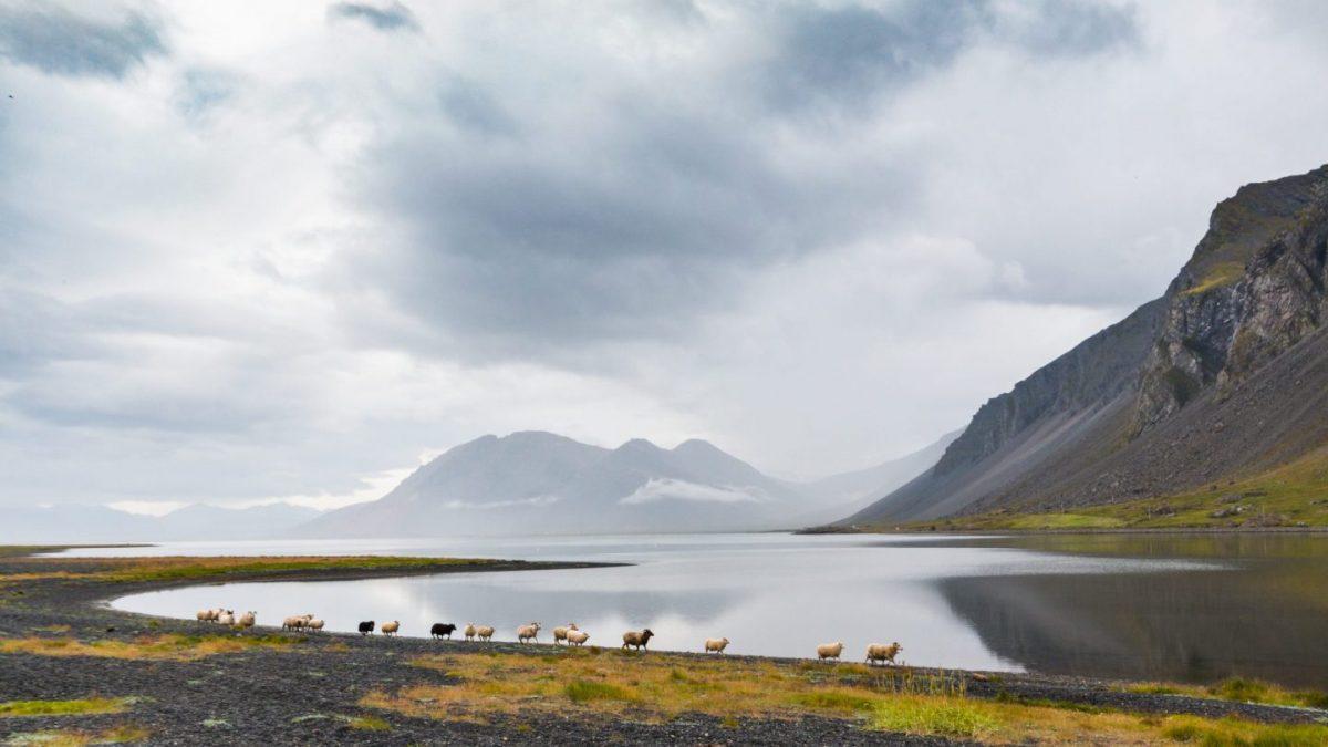 Seyðisfjörður, Eastfjords